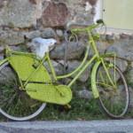 Jazda na rowerze to samo zdrowie